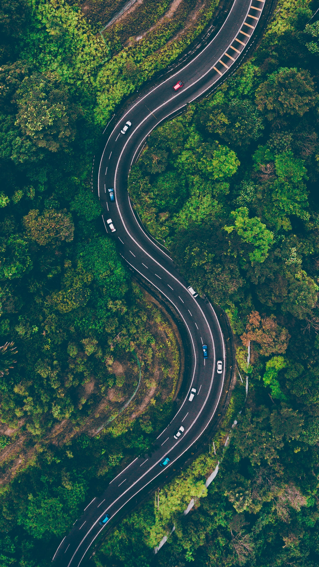 aerial-view-of-road-in-the-middle-of-trees